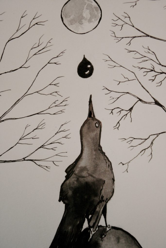Detail of magical grackle drawing by Scott Myst