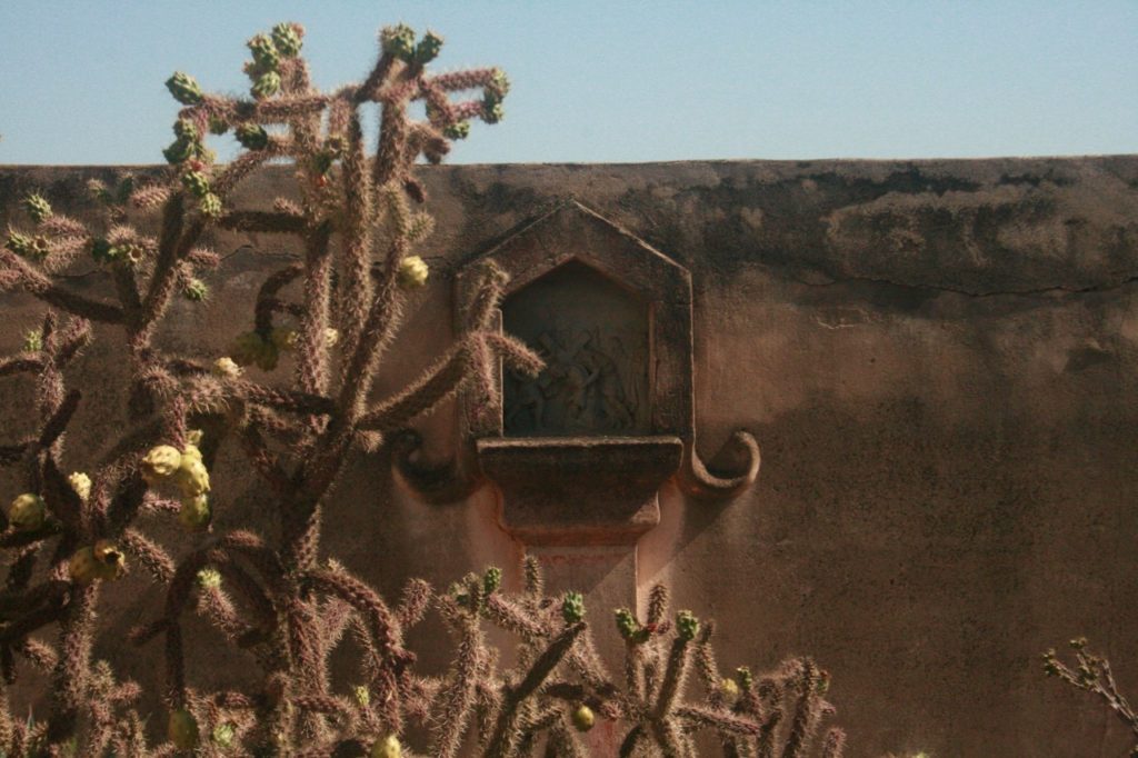 Cholla and relief sculpture at San Xavier mission
