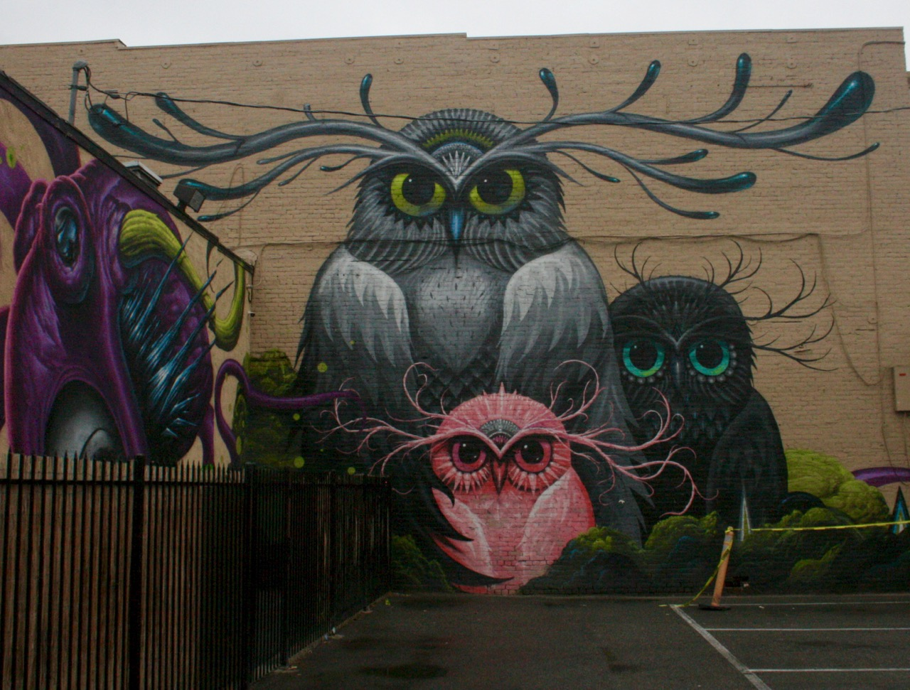 Owl Mural in Riverside, CA