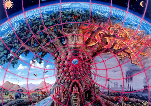 Understanding visionary nature of plant medicines; psychedelic experience