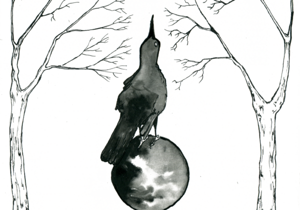 Looking Beyond – A Magical Grackle ink drawing by Scott Myst